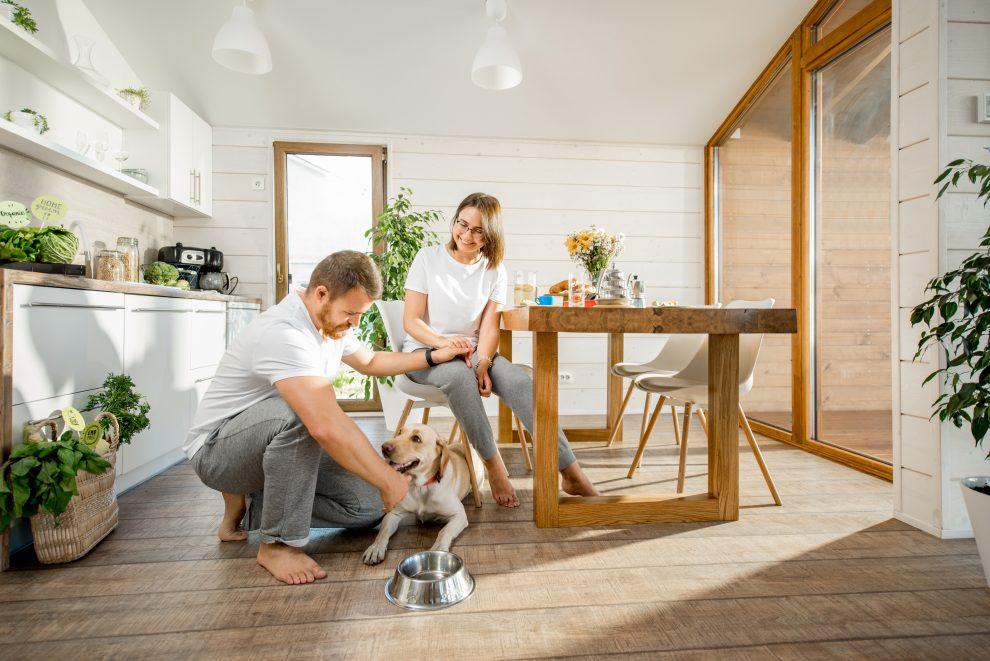 Διακοσμήστε το σπίτι για το κατοικίδιο σας