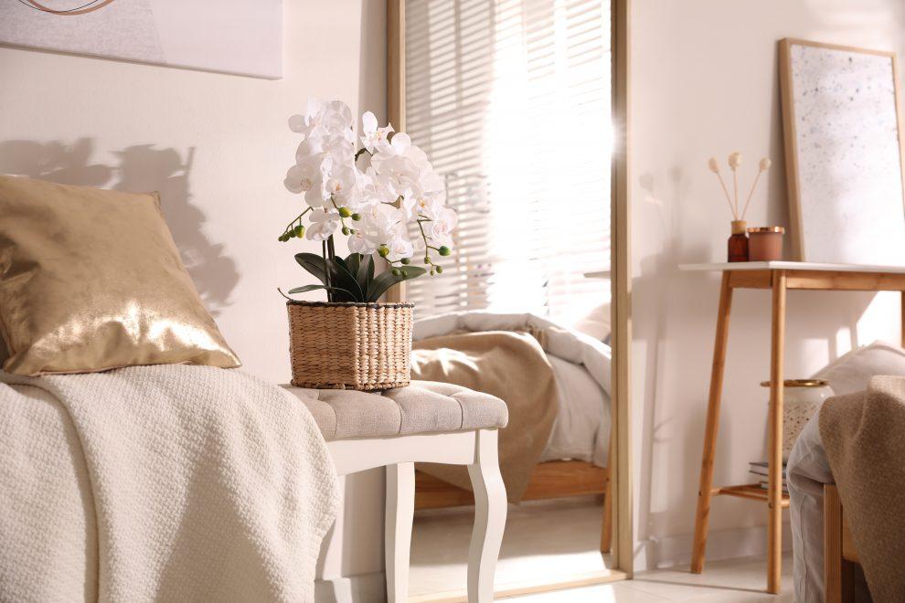 Λευκή ορχιδέα στην κρεβατοκάμαρα
